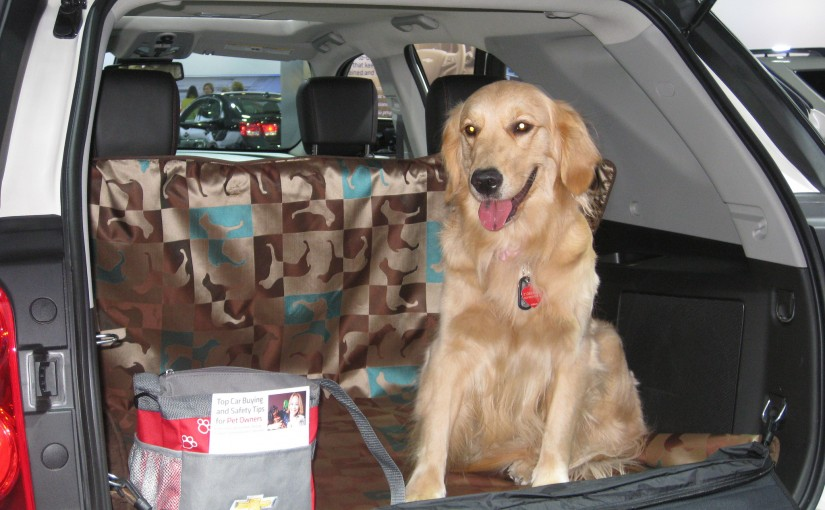 Preparing for Holiday Travel with Pets